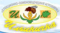 ССА «Ильинична»