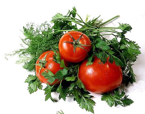 В Башкортостане обсудили стратегию развития овощеводства