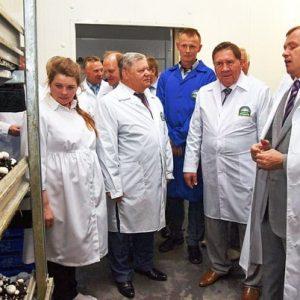 Открытие грибоводческого комплекса в Курске