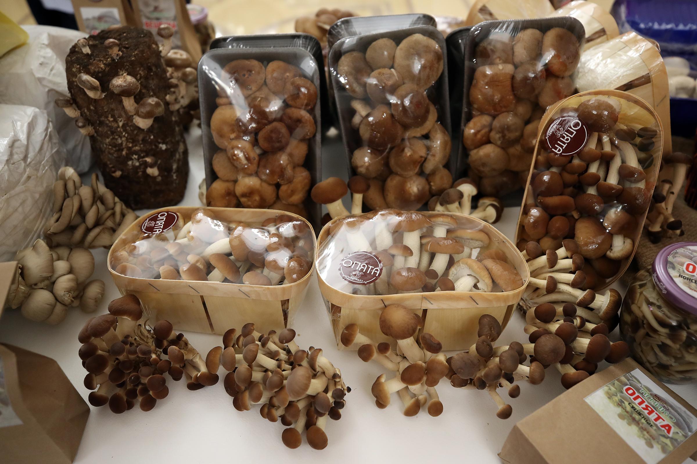 Новый этап в развитии грибного комплекса России