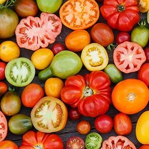Новости Минсельхоза по сбору овощей в 2016 году
