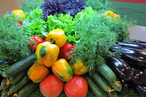 Валовый сбор овощей на 23 июня 2020