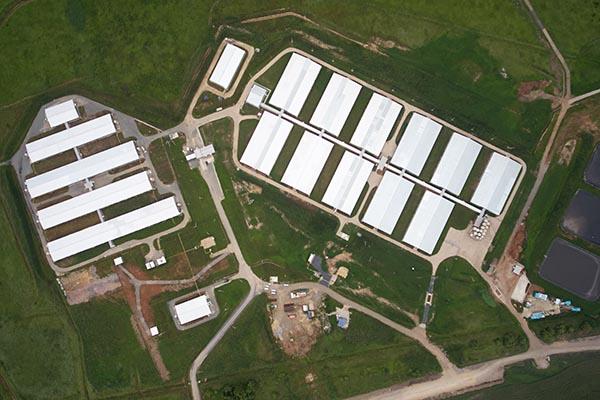 Первая очередь тепличного комплекса в Приморье будет введена в октябре