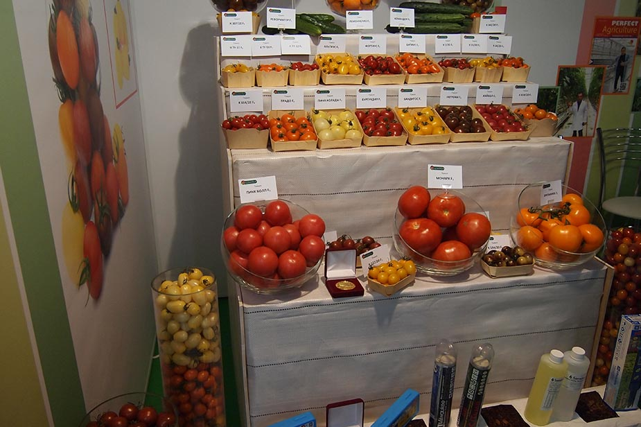 """Results of the XVII specialized exhibition """"Horticulture of Russia"""""""